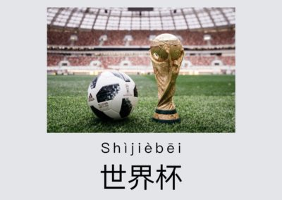 Watch the 2018 FIFA World Cup | Chinese Story for HSK Level 2 Practice
